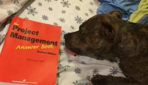 """This book has some e some tasty PMP Test Tips!"" - Mavis"