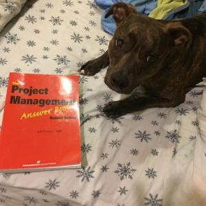 "Mavis recommends: ""Buy my Dad's book!"""