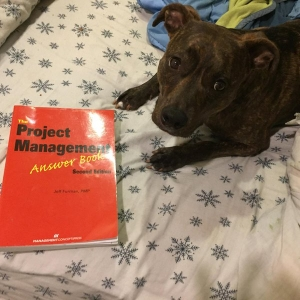 "Mavis: ""Has Some Tasty PMP Test Tips!"" (The PM Answer Book)"