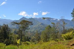 Papua_New_Guinea_(5986599443)